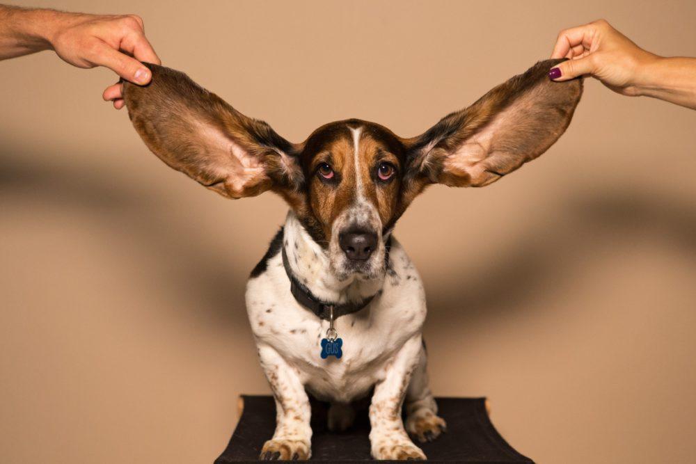 невроз и шум в голове