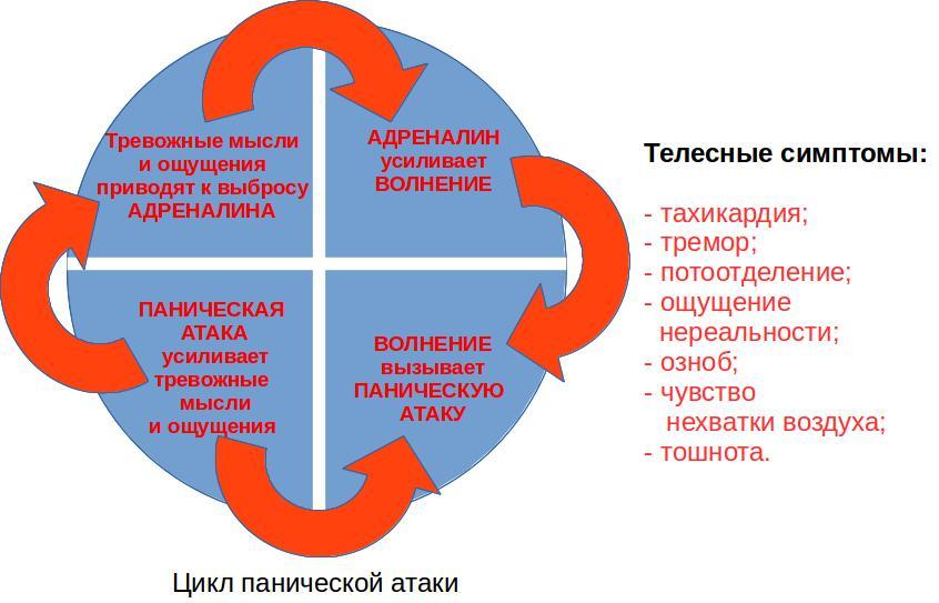 цикл панической атаки